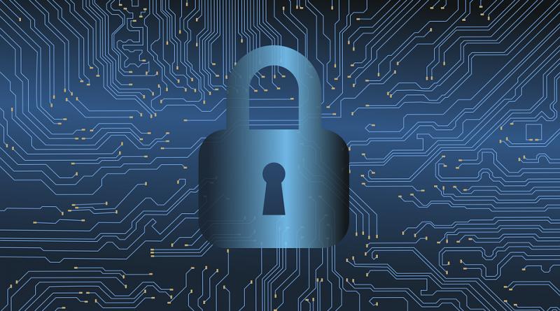 Diventare esperti di cybersecurity: perché e quale percorso di studi intraprendere